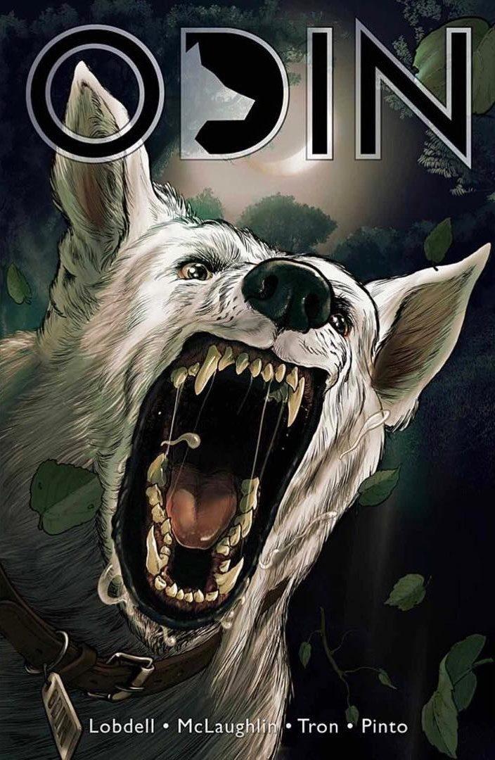 Odin couverture livre