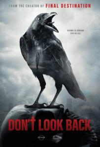 Don't look back affiche film